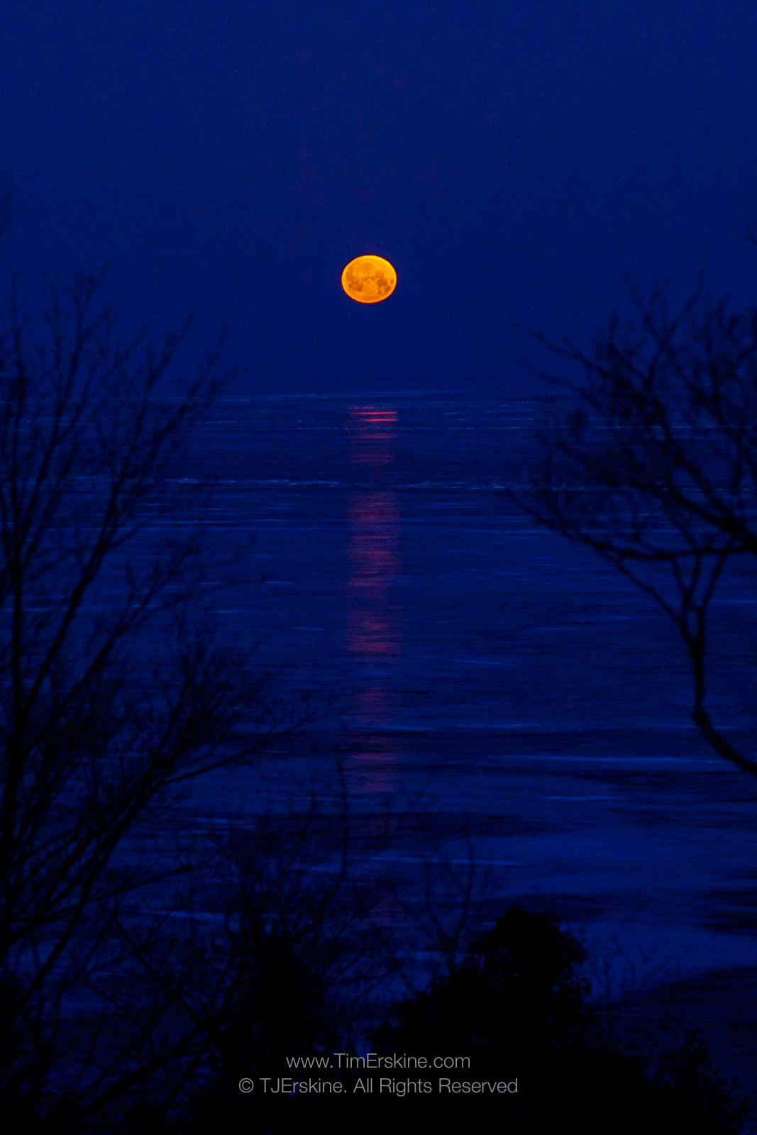 Blue Moonset Over Ice
